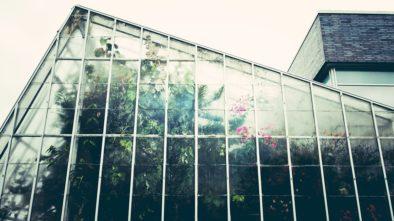 Na zahradu patří skleník