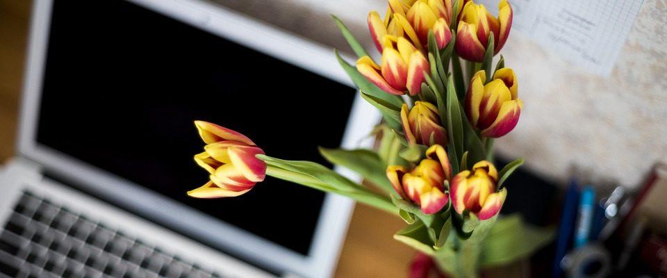 Proč by měly být čerstvé květiny v každé kanceláři?